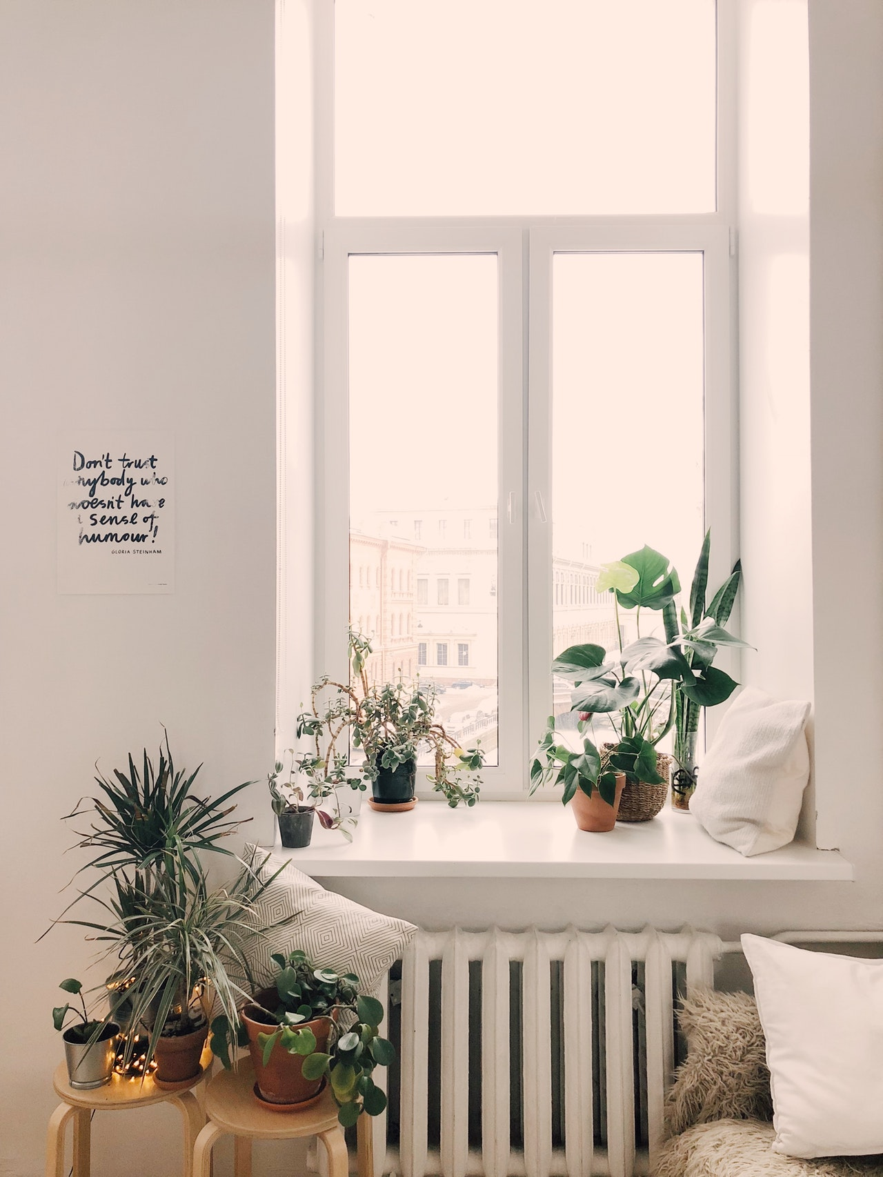 A room with potted plants