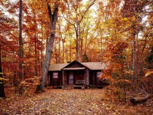 A cottage in the woods as a part of the PA lifestyle.