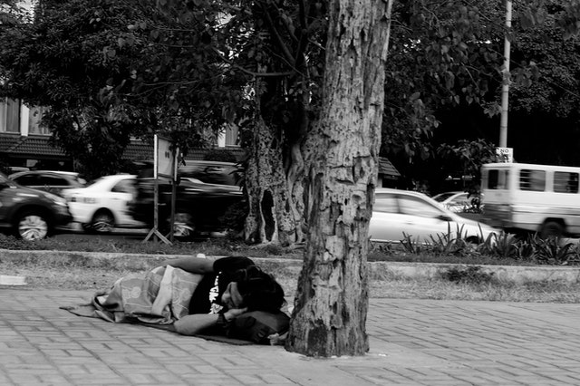 Homeless person sleeping under a tree.
