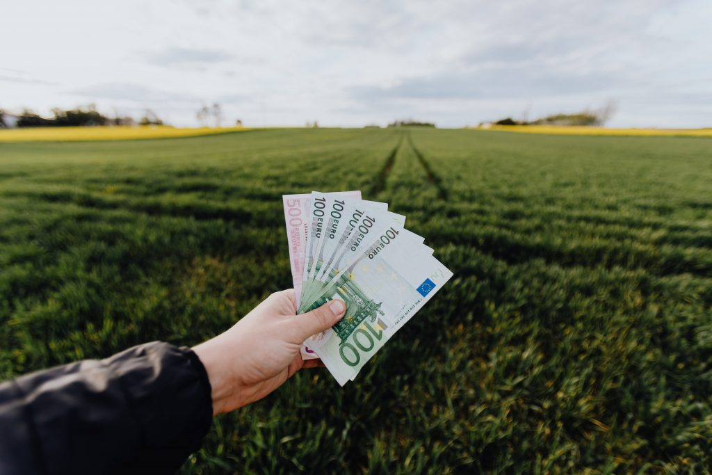 green field with a hand holding money