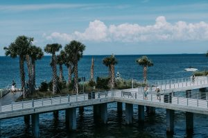 bridge and palm trees in St Petersburg